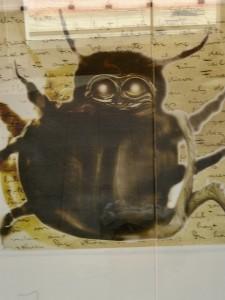 final beetle
